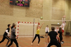 Volleydag (3)